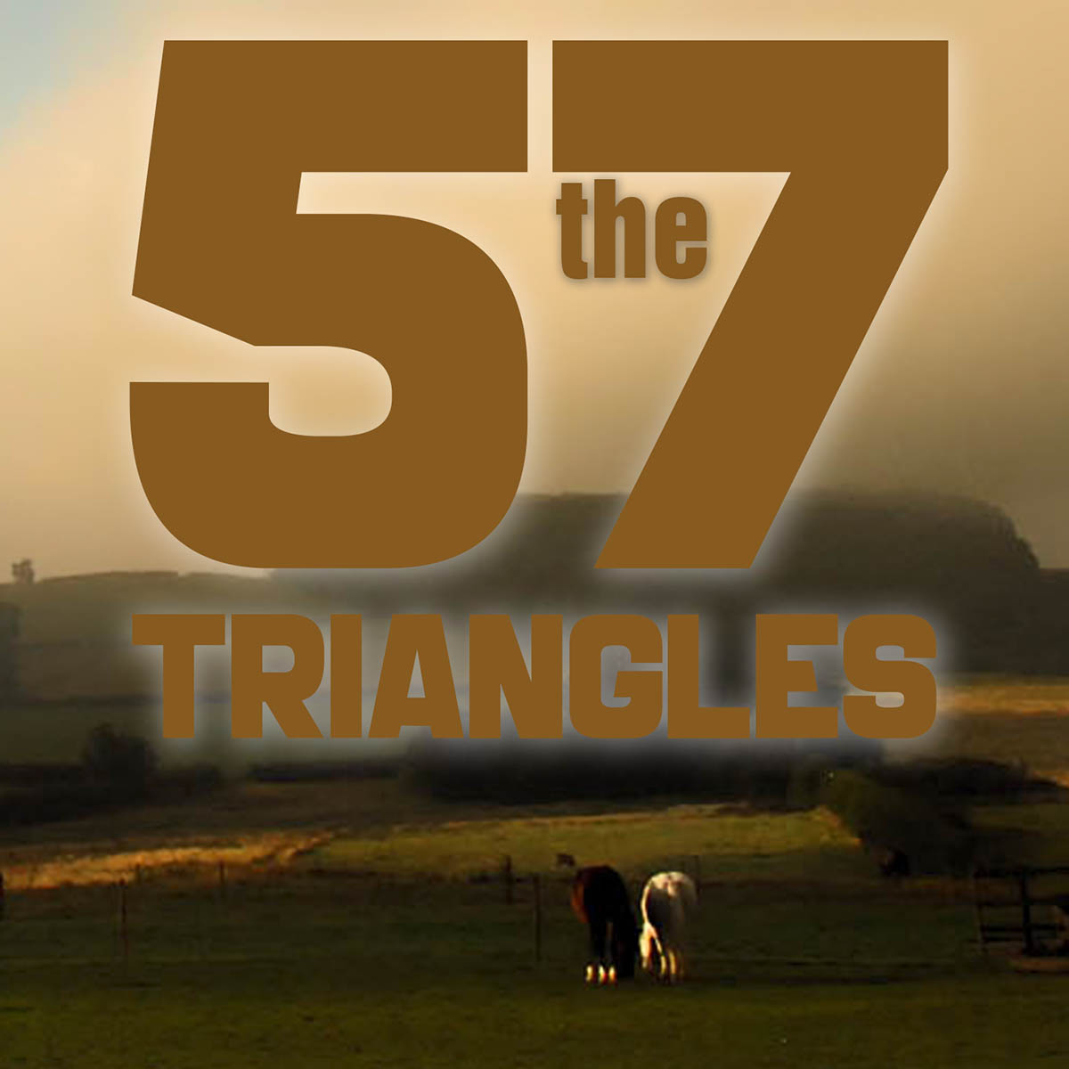 The 57 Triangles
